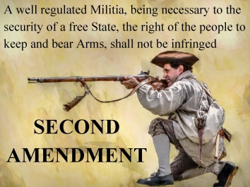 second-amendment-rifleman-1a