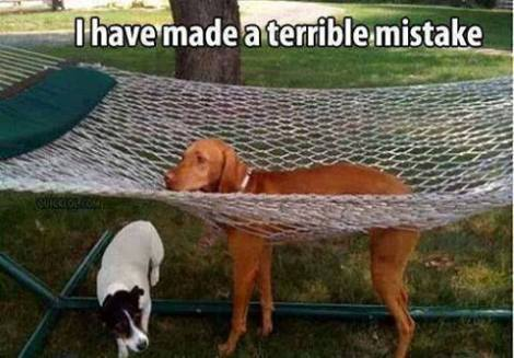 Terrible mistake
