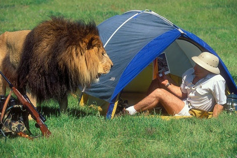 Lion and man in tent
